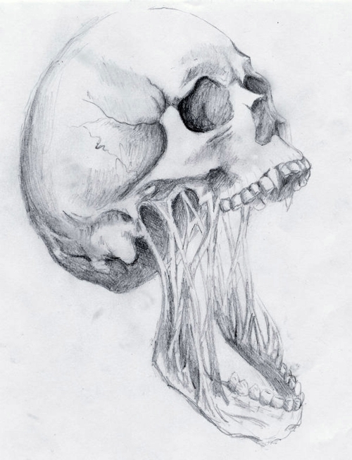art, black and white, decay, drawing, pencil, skeleton, skull, tone