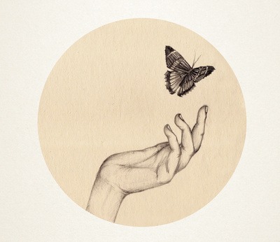 art, butterfly, hand, illustration