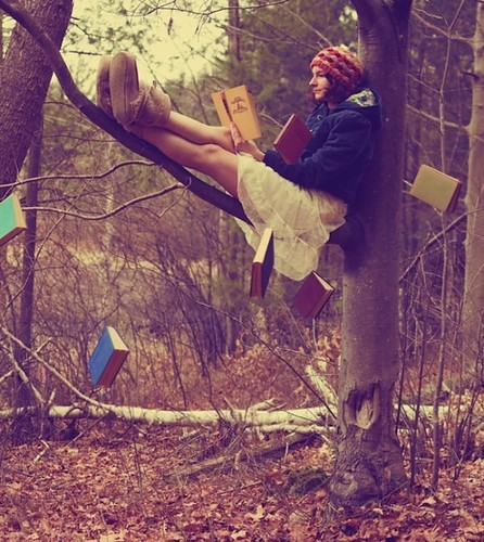 autumn, books, cold, fall, forest