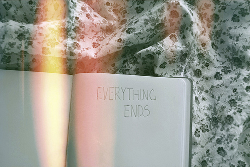 awesome, dairy, everything ends, film, floral, photography, text