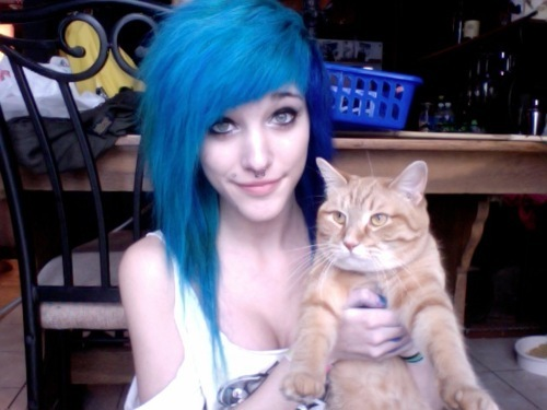 b1ush, beautiful, blue hair, cat, girl