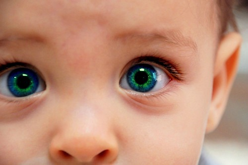 baby, beautiful, bebe, blue, bright, color, cute, eyes, green, olhos, photo, photography, photoshop, pretty, same shit