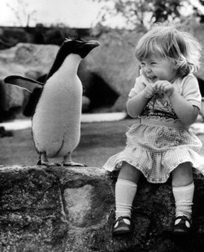 baby, bird, black, blonde, cute, dress, girl, lake, laught, little, penguin, smile, white