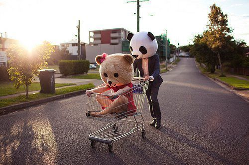 bear, cute, fun, love, panda