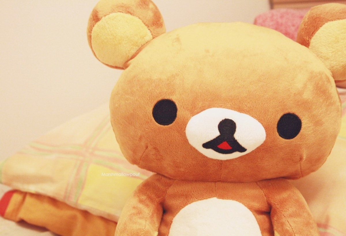 bear, cute, plush, rilakkuma