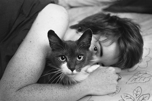 beautiful, black and white, boy, cat, cute, photograpgy