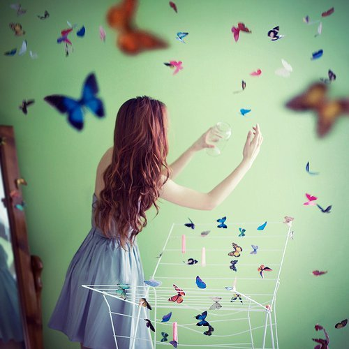 beautiful, butterfly, colors, cute, girl