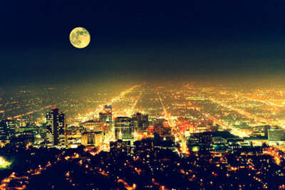 beautiful, city, city lights, cute, forest