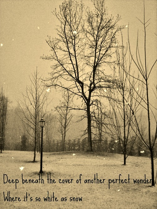 beautiful, cold, old, photography, poetry, red hot chili peppers, retro, sepia, snow, text, tree, vintage, white, winter