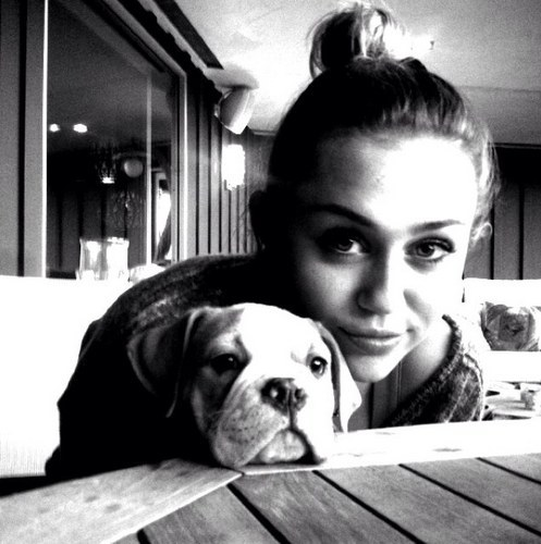 beautiful, cute, cyrus, girl, miley