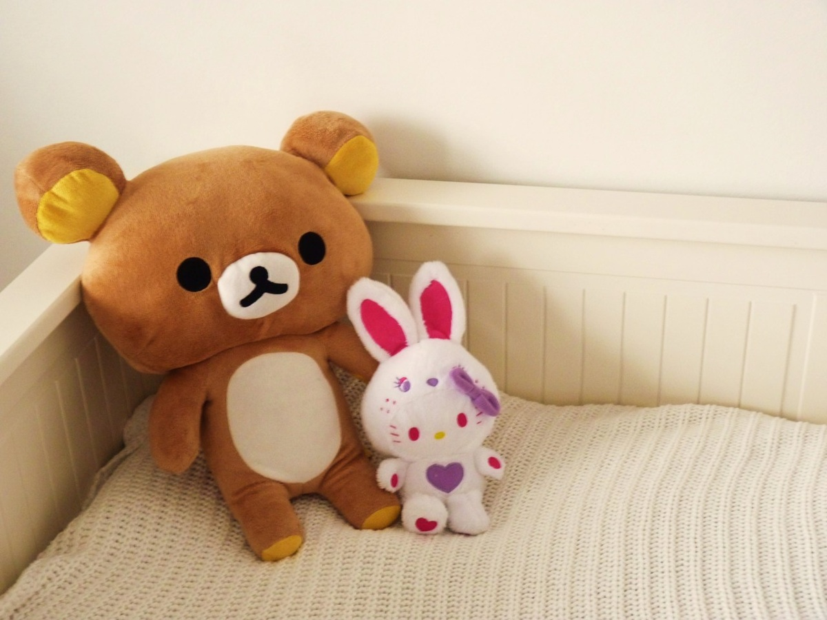 bed, bunny, cute, forever, friends