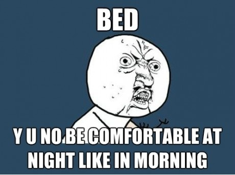 bed, comfortable, funny, lol, meme