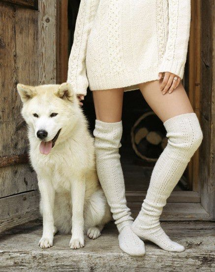 beige, dog, friends, girl, knitting
