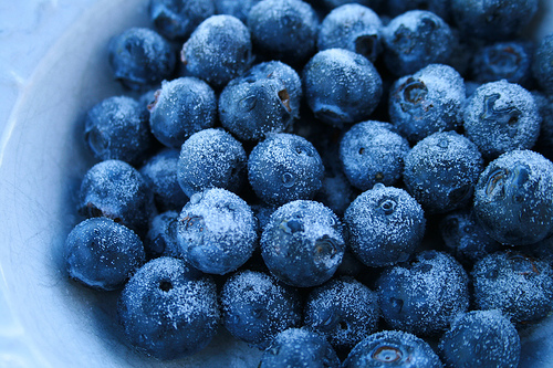 berries, berry, blue, blueberries, blueberry