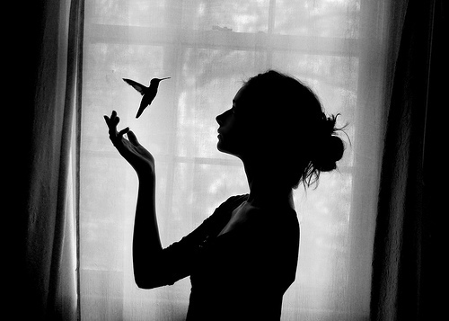 bird, black and white, girl, photography