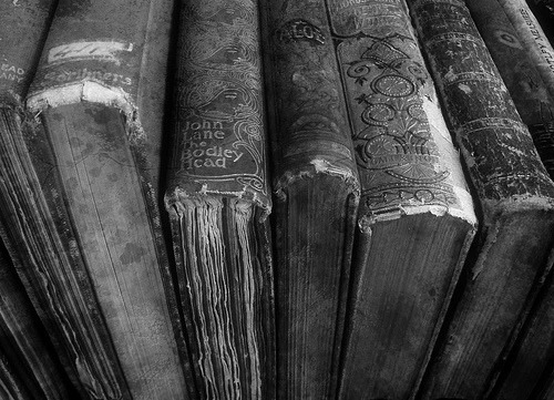 black &, white, book, books, photography, text - image ...