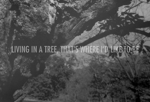 black and white, hippy, hipster, life, living, nature, text, tree, weird