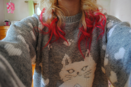 blonde, cat, girl, hair, red