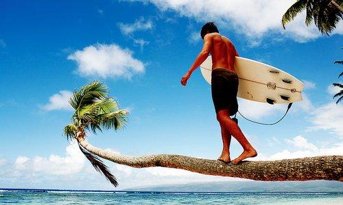 blue, gree, guy, ocean, palm tree, sea, surf, surfboard, surfer, tan