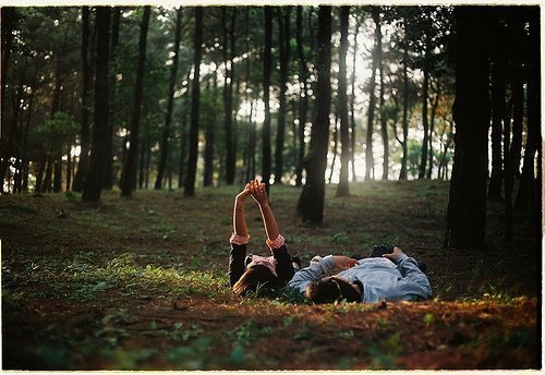 boy, couple, cute, forest, girl, sunlight