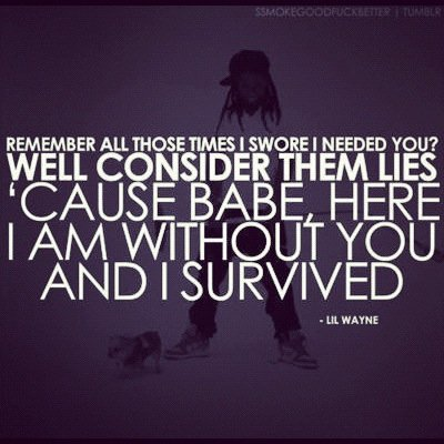 broken, couple, fuck you, hurt, lie, lies, lil wayne, lilwayne, love, need, purple, quote, text