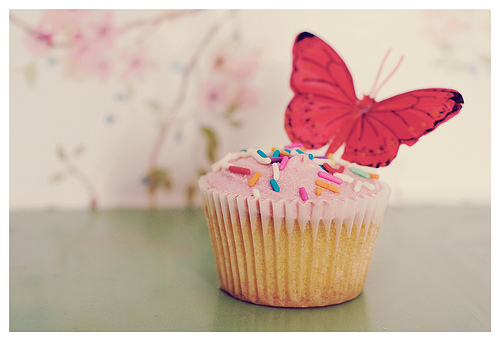 butterfly, cupcake, cute, pink