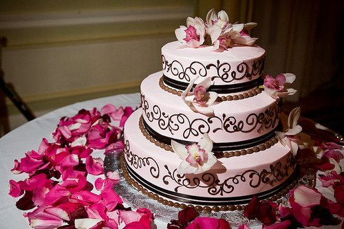cake, photography, pink, roses, wedding
