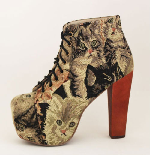canvas, cats, cute, heels, jeffrey campbell, lita, shoes