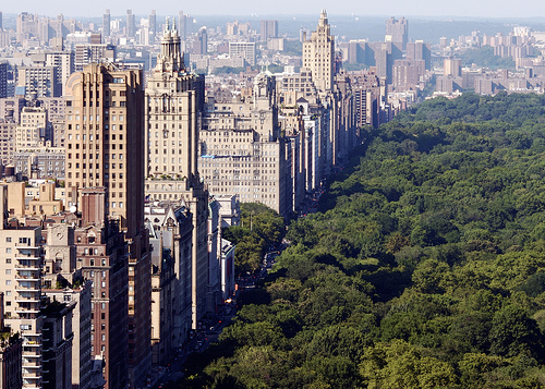 central park, new york, new york city, nyc, text