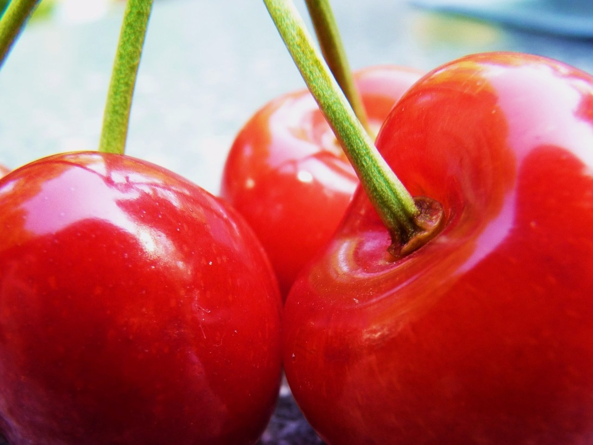 cherries, cherry, fruit, green, photography