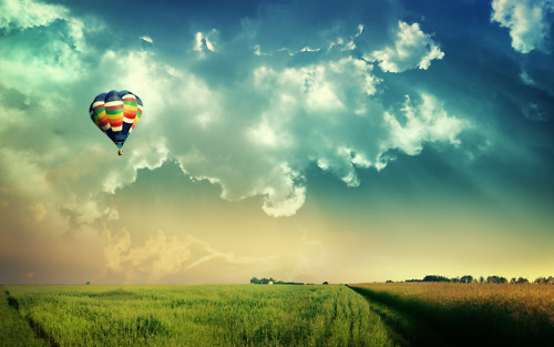 clouds, field, hot air balloon, photography, sky