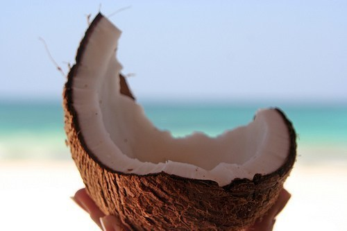coconut, delicious, sea, summer, tropical