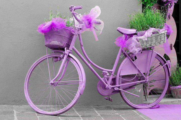 cute, cycle, design, happy, love
