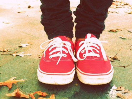 cute, fall, fashion, jeans, red, swag, vans