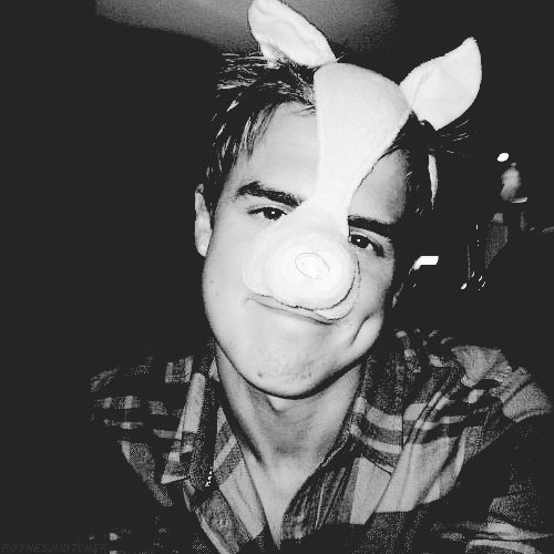 cute, mcfly, tom fletcher