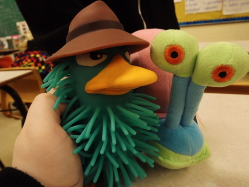 cute, perry the platypus, photography and platypus