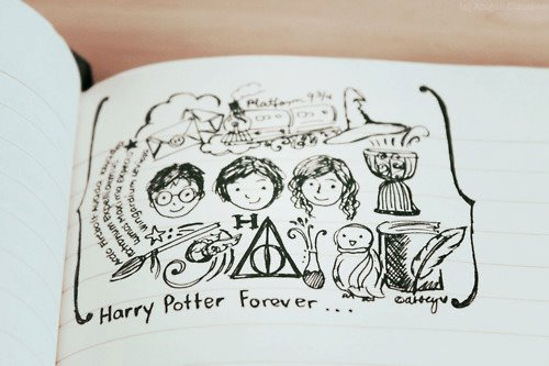deathly hallows, forever, golden trio, harry potter, hedwig