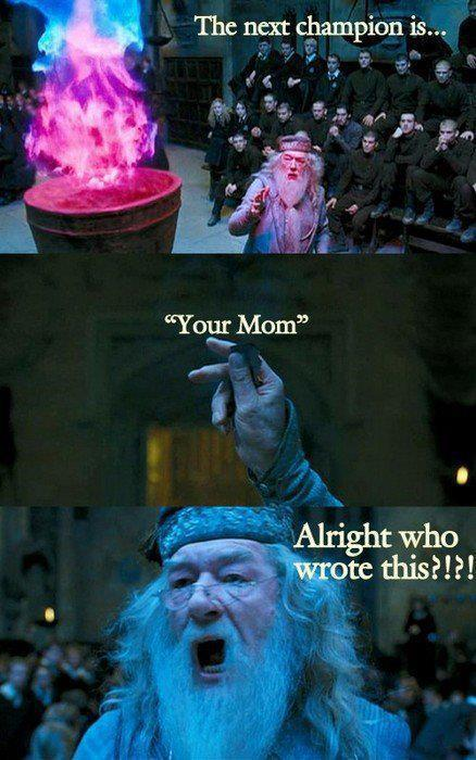 dumbledore, funny, haha, harry potter, lol