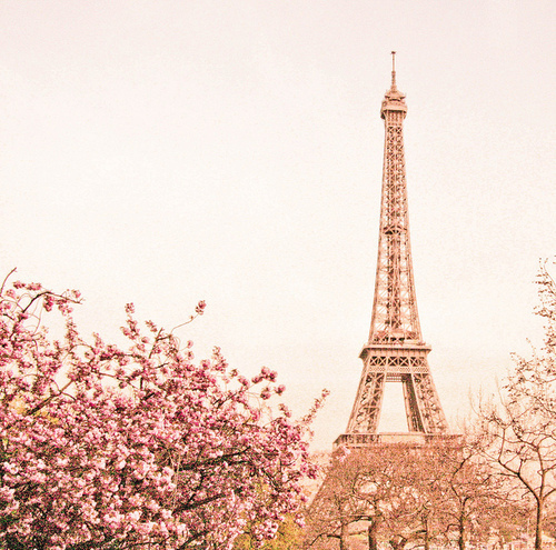 Eiffel Tower Photography Pink