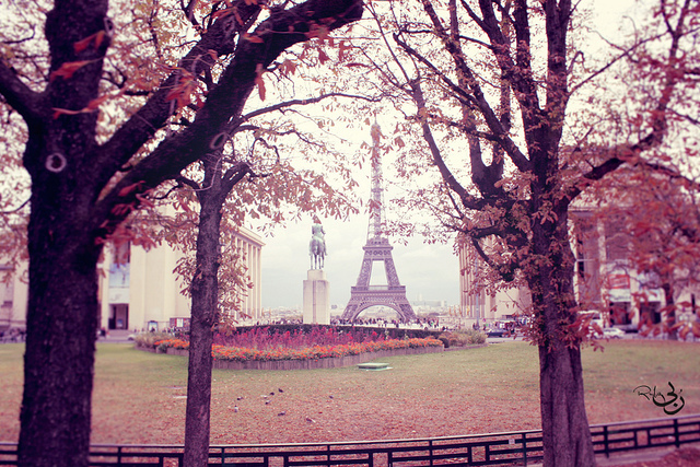 eiffel tower, paris, pink, trees