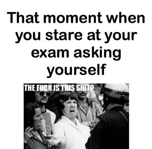 exam, funny, lol, shit