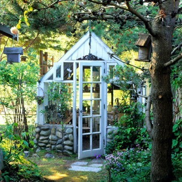 exterior, foilage, green, greenhouse, nature