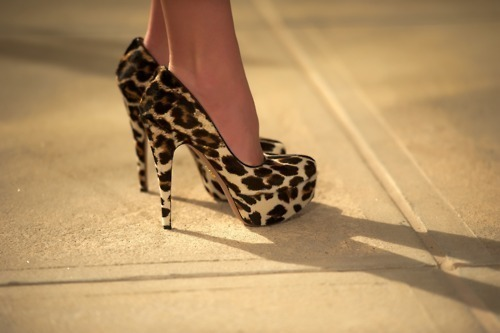 fashion, heels, leopard print, shoes