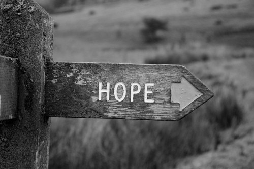 hope and life Get an answer for 'in night, what are 6 events that are examples of hopelessness and death and what are 6 examples of hope and lifein chapters 6 - 9' and find homework help for other night.