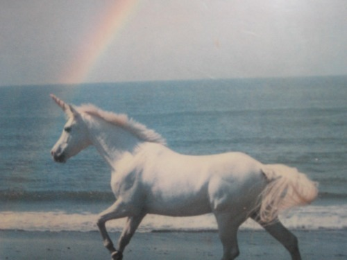 rainbow, sea, unicorn